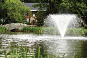 Otterbine Gemini Floating Pond Fountains