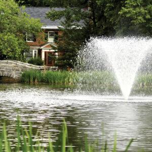 Otterbine Gemini Floating Pond Fountains