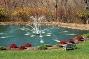 Otterbine Genesis Floating Pond Fountain