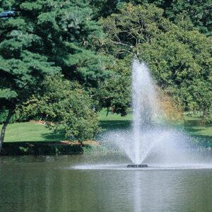 Otterbine Phoenix Floating Pond Fountain
